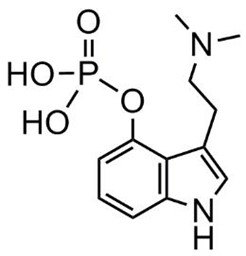 Picture of Psilocybin