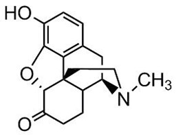 Picture of Hydromorphone